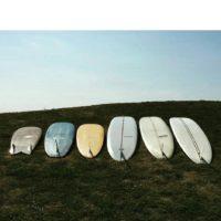 SurfID試乗会のお知らせ
