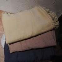 VioletteRoom%2012016613